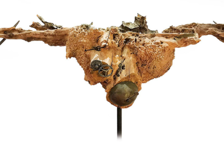 Kreuzigung der Natur, 2020, Mixed Media, 170x75x30cm